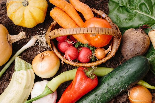 食材・食品の保存を上手にして美味しく長持ちさせる方法